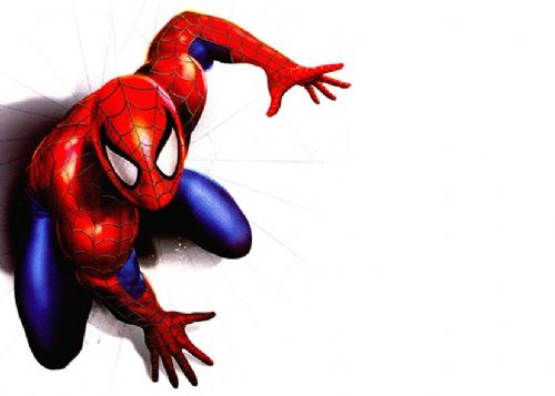 SPIDER MAN - WHITE - Landscape canvas print - self adhesive poster - photo print